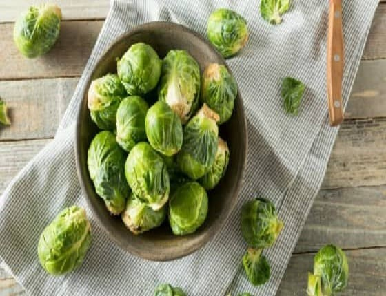 Can Dogs Eat Brussel Sprouts? Are Brussel Sprouts Good For Dogs?