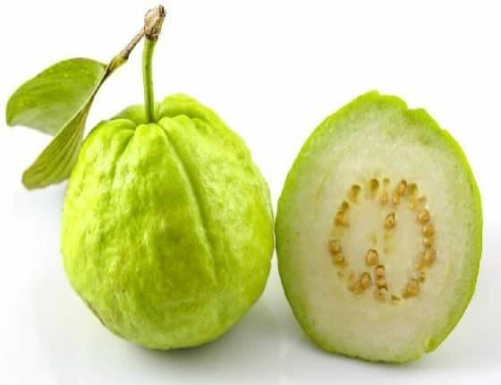Can Dogs Eat Guava? Is Guava Good For Dogs?
