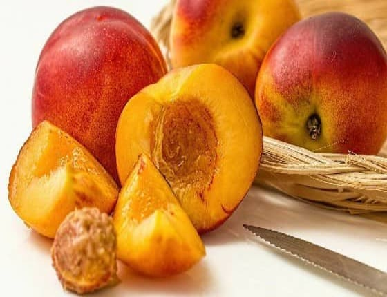 Can Dogs Eat Nectarines? Are Nectarines Safe For Dogs?