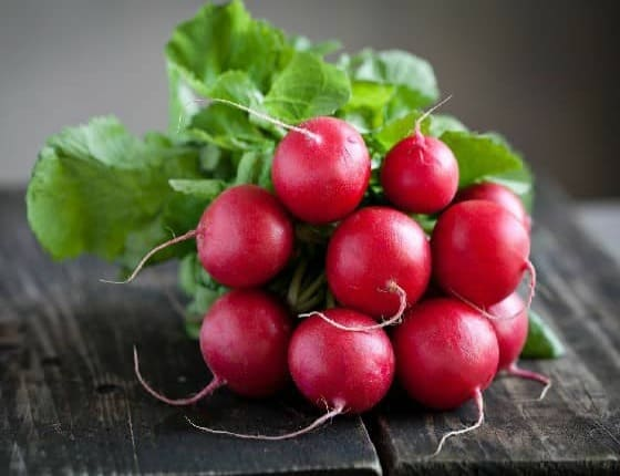 Can Dogs Eat Radishes? Are Radishes Good For Dogs?